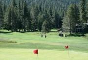Tahoe Paradise golf