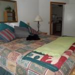 1350 Kirkwood Meadows Drive 210 bedroom