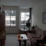 1350 Kirkwood Meadows Drive 210 living room
