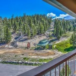 416 Quaking Aspen view