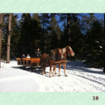 South Lake Tahoe Winter Activities – Fun For the Whole Family!